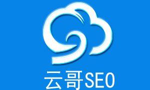 深圳中小企业快速SEO诊断网站的八种方法!