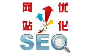 云哥SEO与您分享网站SEO优化五点常识!