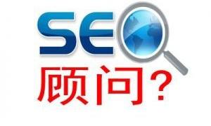 在中小企业网络发展深圳SEO顾问有哪些价值?